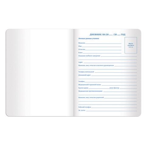 """Дневник 1-11 класс 48 л., обложка кожзам (гибкая), принт, BRAUBERG """"DAZZLE"""", серебристый, 105453 - 3"""