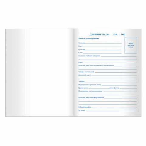 """Дневник 5-11 класс 48 л., твердый, BRAUBERG, выборочный лак, с подсказом, """"Лемур"""", 105592 - 4"""